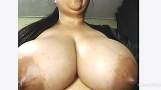 latina bbw boobs booty