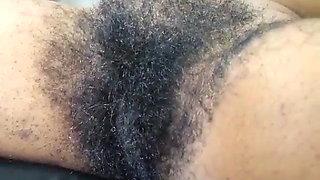 Hairy Harley